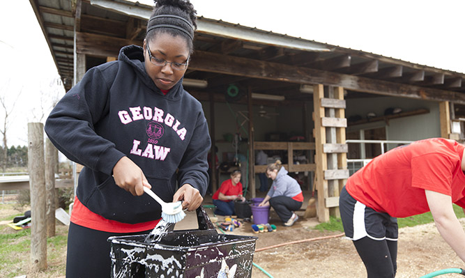 members of law student organizations volunteer for PILC community service day